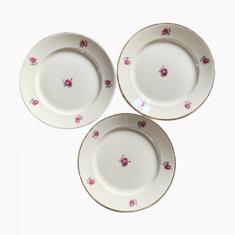 Lot de 11 assiettes fleuries semi-porcelaine Badonvilliers